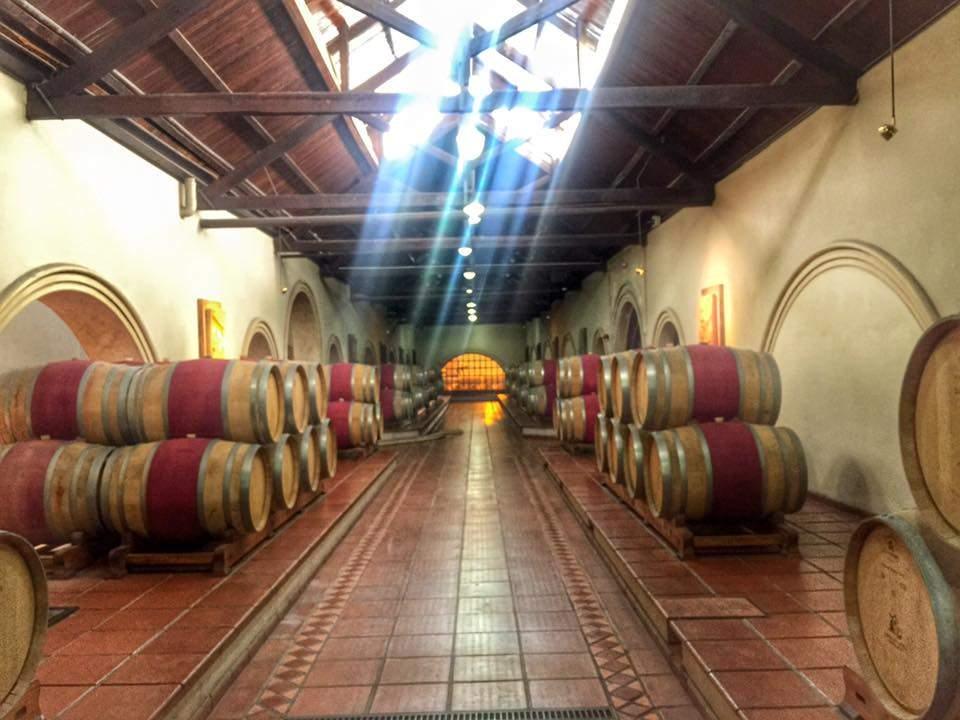 Vinícolas em Mendoza 16
